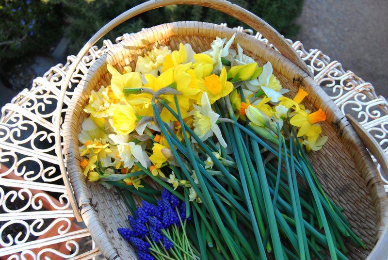Flowerbasker