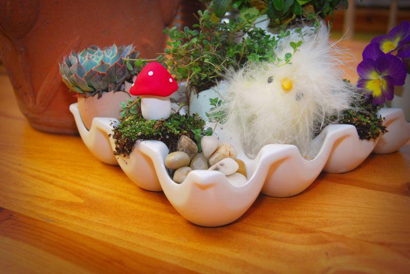 Eggshells3