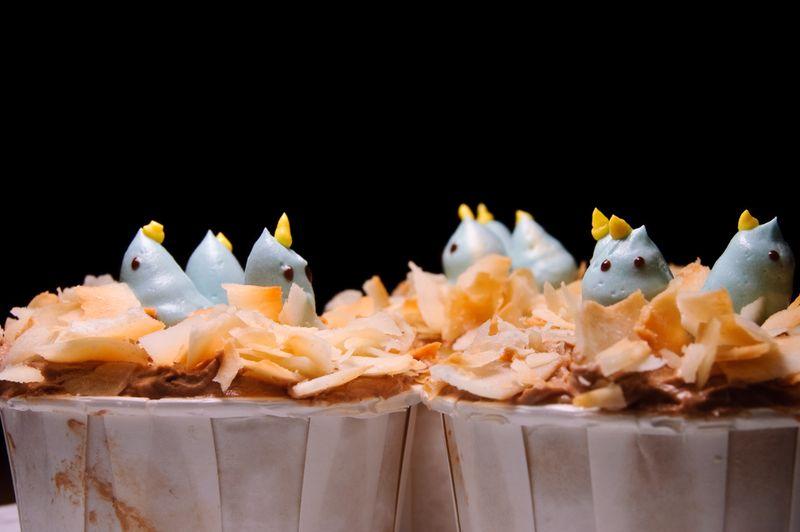BluebirdCupcakes