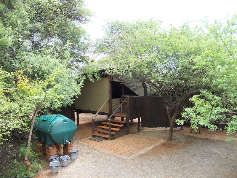 Madikwe Game Reserve 083