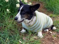 Regsweater4