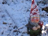 Snowgnomesm