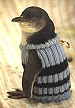 Penguinssweater